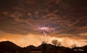 Nature Photography Pietermaritzburg