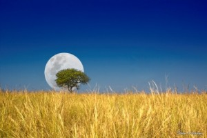Landscape Photographer Pietermaritzburg