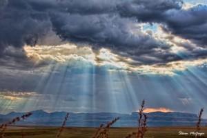 Nature Photographer Pietermaritzburg